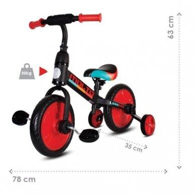 Balansinis dviratukas 3in1 MOLTO LEGGERO  9